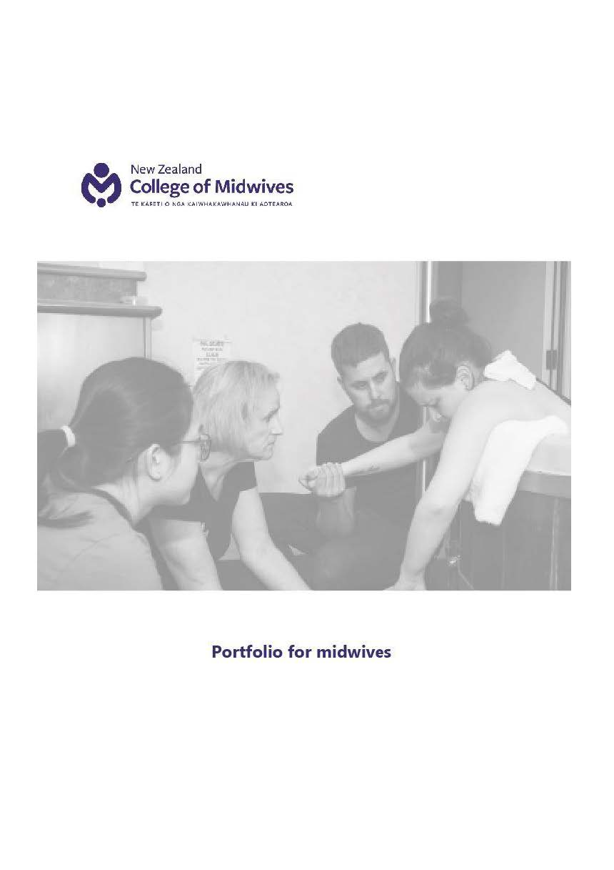 Portfolio For Midwives